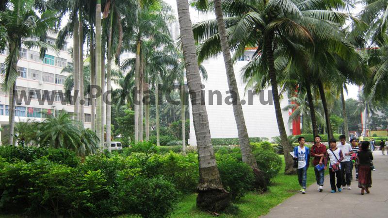 Hainan Normal University (22)