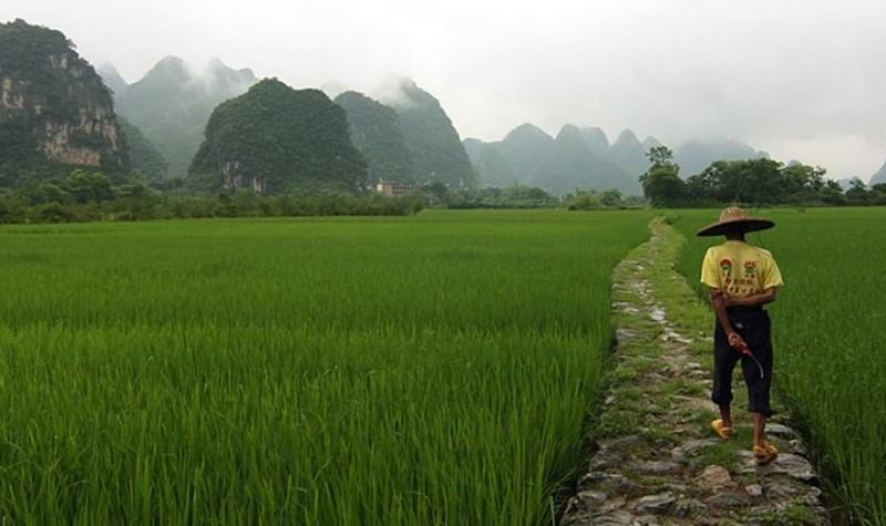 Language-School-Yangshuo (2)