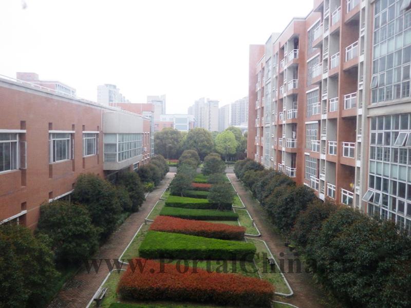 School 2 ECNU (12)